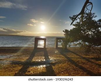 Solnedgang med kunst og strand og trær