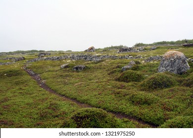 SOLOVETSKY ISLANDS, RUSSIA - JUNE 18, 2009: Ancient labyrinth, I-II cen. BC, on Bolshoy Zayatsky island . Many of them was found around White sea, Purpose is unknow, presumably cult of the dead