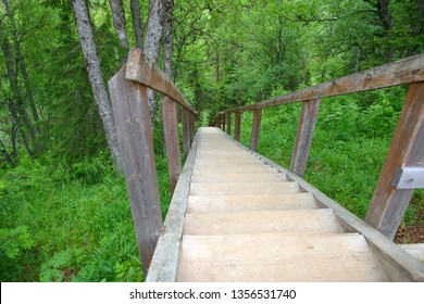 SOLOVKI, REPUBLIC OF KARELIA, RUSSIA - JUNE 27, 2018: Staircase on the northern slope on Mount Sekirnaya, 19th century. The Holy Ascension skete. The Solovetsky Monastery. Solovki Islands