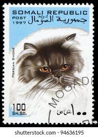 SOMALI - CIRCA 1997: A stamp printed in Somali shows Persian Smoke cat, circa 1997