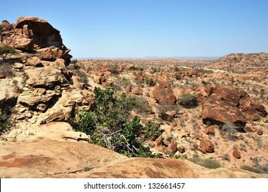 Somali landscape