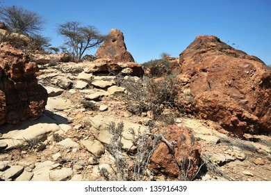 Somali landscape in the area of Las Gil