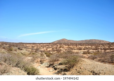 SOMALIA - JANUARY 13, 2010: Somali landscape. Somaliland - an unrecognized self-declared state in the northern part of the African Somali Peninsula.