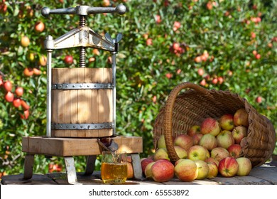 Some Apple gets pressed to a fresh Apple Juice. Some Apple Trees are behind it.