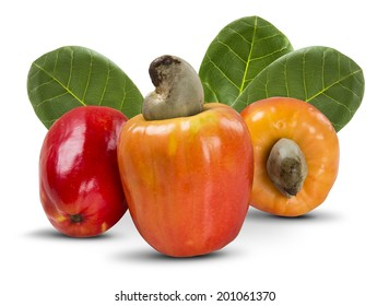Some cashews with leafs on a white background