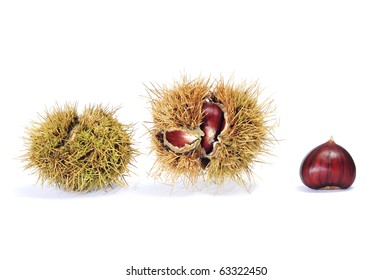 some chestnuts in its shell isolated on a white background