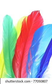 some feathers of different colors on a white background