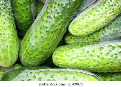 some fresh cucumbers in the water close up