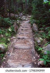 Some man made steps on the Monroe Trail on the way up Camel's Hump in Duxbury Vermont