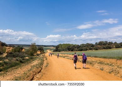 some pilgrims walking along the camino de santiago i the spanish plateau or meseta. green fields, blue sky and yellow dirty path