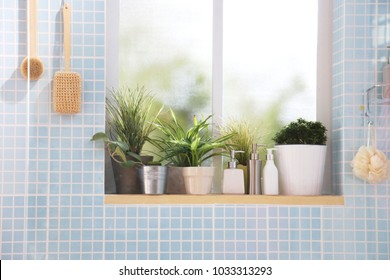 some plants put on the edge of window in a bathroom