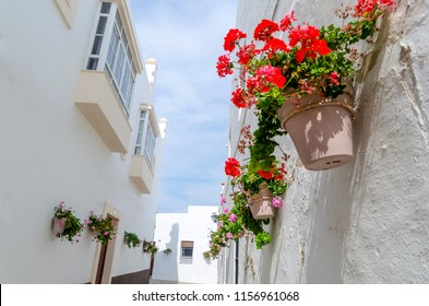 Some pots of geraniums hanging on the wall on the streets of Rota, Cadiz, Spain