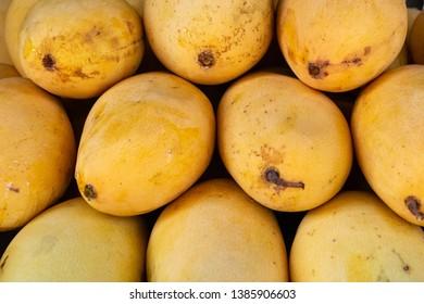 Imágenes, fotos de stock y vectores sobre Mango Stock