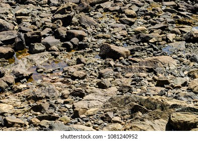 some rocks with water