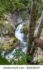 some small water fall in Cristian fall area  in mt.Rainier National park,Wa,Usa