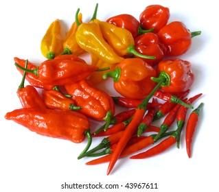 some of the world's hottest chilies on white; clockwise from left: naga jolokia, fatalii, habanero, thai birdseye