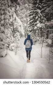 Someone walks in winter forest and trees under a lot of snow with  path