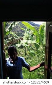 Somewhere between Ella and Nanuoya, Sri Lanka - April 22nd 2011: Taking a scenic train ride from Ella to Kandy, passing some banana plants. Man standing in the open door of the carriage.