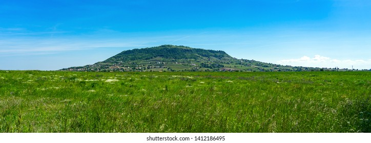 Somlo hill with traditional Hungarian homes and vineyards in the middle of a wild flower field