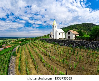 Somlo Hungary vineyard in wine region. Panorama photo of church Szent Ilona.
