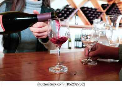 Sommelier of the tasting room of the winery company pouring white red into a glass