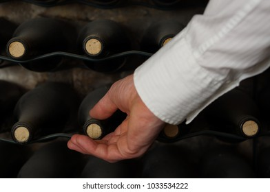 Sommelier in wine cellar. Dusty bottles of wine on racks. Caucasian hand takes a dusty bottle of wine in cellar.