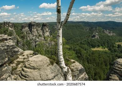 Sommer, Nature in Germany. Sandstone in Europa. - Shutterstock ID 2020687574