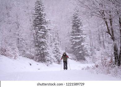 Somport, France. Female cross country skiier in a winter landscape.