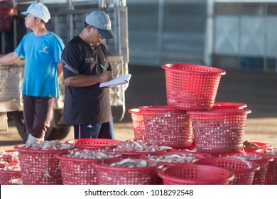 Songkhla, Thailand - January 8, 2018: Fishing government official check for illegal fish from Fishing vessel at fishing vessel harbour.