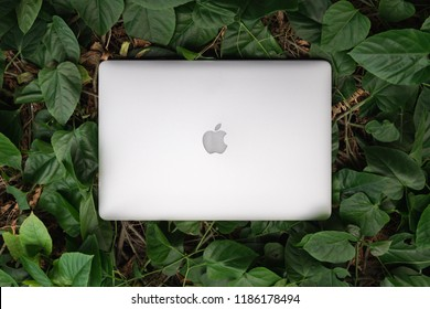 SONGKHLA, THAILAND - September 22, 2018: Apple Macbook pro computer on green leaves pattern, flat lay, created by Apple Inc.