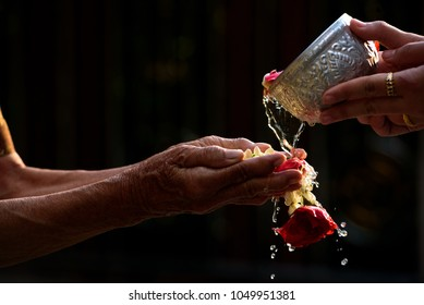 Songkran day, Thai culture concept, family are watering on the elderly or respected grandparents are apologetic with respect to the patron.