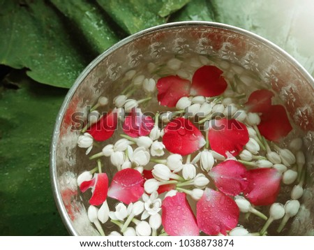 Songkran Water Bowl Decorating Rose Petals Stock Photo Edit Now Inspiration Decorating With Punch Bowls