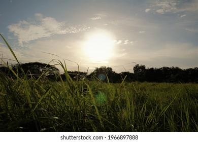 Sonne am Horizont in Panama - Shutterstock ID 1966897888