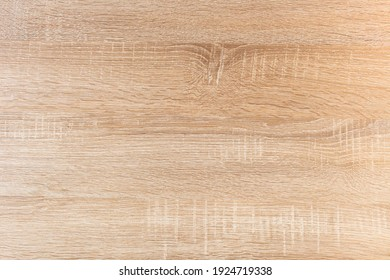 Sonoma oak tree raw texture