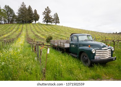 Sonoma Valley, CA - April 4, 2019: Acorn Hill Winery vintage truck parked along the rows of grape vines in Sonoma Valley California during the early Spring with wildflowers in bloom.