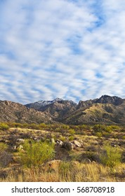 Sonoran desert landscape with desert and mountain range with interesting cloud formation in the Catalina mountains, Tucson, Arizona, USA