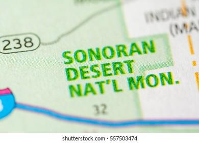 Sonoran Desert National Monument. Arizona. USA
