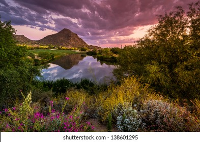 Sonoran Desert Sunset Reflection