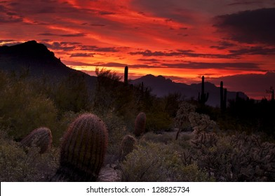 """""""Sonoran Sunrise""""  Deep oranges and reds seep into the sky as dawn breaks over the sonoran desert in Usery Mountain Regional Park, Mesa, Arizona."""