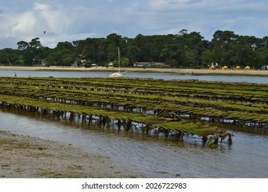 Soorts-Hossegor, FRANCE on July 24, 2021 : The oyster beds of Hossegor lake.