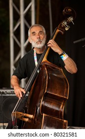 SOPRON, HUNGARY - JUN 30: Balázs Berkes famous hungarian doublebass player play on doublebass in the Volt Festival on Jun 30, 2011 in Sopron, Hungary.
