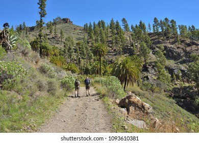 Soria trekking route one from most popular entertainment for active tourists in Gran Canaria island. Canary island. Spain