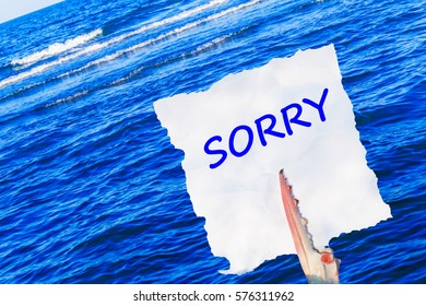 Sorry blue Word  on white torn piece of paper in crab claw on blue sea background  and crooked skewed  horizon line , close up