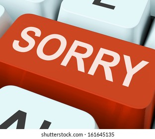 Sorry Key Showing Online Apology Or Regret