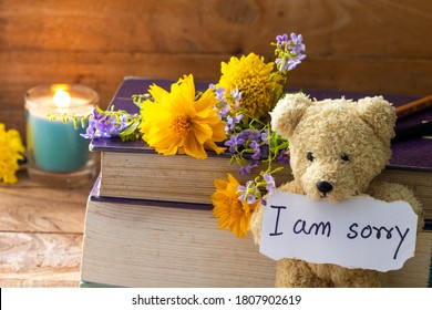 i am sorry message card handwriting with book ,teddy bear and flowers cosmos ,marigold ,purple flowers decoration postcard style on background wooden
