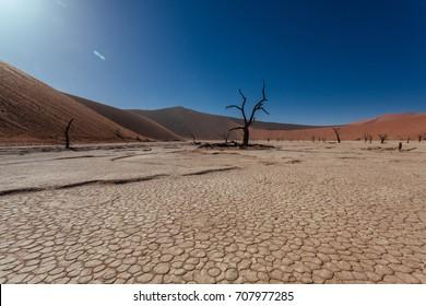 Sossusveli. Dead Vlei. Deadvlei. Namib Desert