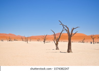 Sossusvlei is the one only of its kind on earth. It attracts a lot of tourist from all around the world.