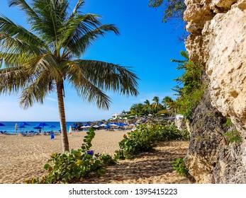 Sosua Beach Playa Alica with Palms