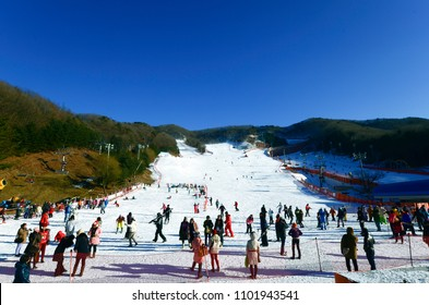 Soul,Korea-Jan 10,2015: Skier Foreigners to come skiing at Vivaldi Park Ski Resort (Everland)on vacation in the winter every year.