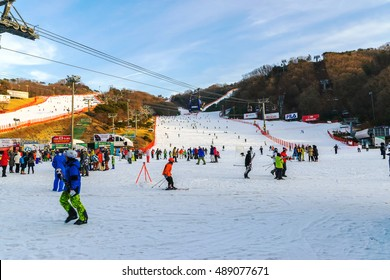 Soul,Korea-Jan 4,2016: Skier both Koreans and foreigners to come skiing at Vivaldi Park Ski Resort on vacation in the winter every year.